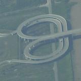 Lótus Bridge