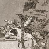 Sleep of Reason